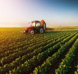 circolari-note-agricoltura